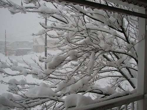 10.2.3雪
