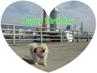 シェリー誕生日