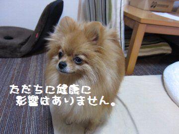 IMG_3662.jpg