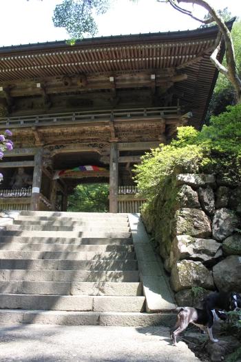 槙尾山 002