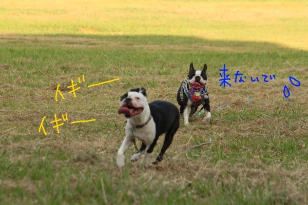鶴見緑地 130-1
