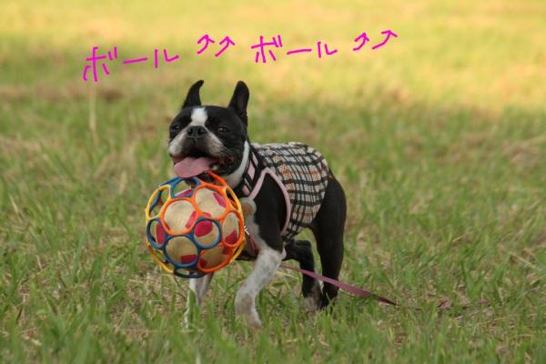 鶴見緑地 100-1