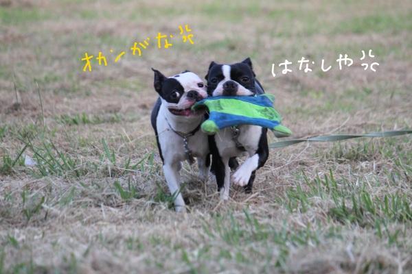 鶴見緑地 070-1
