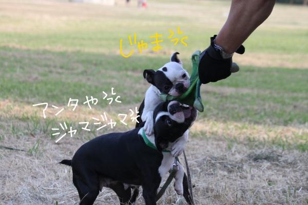 鶴見緑地 086-1