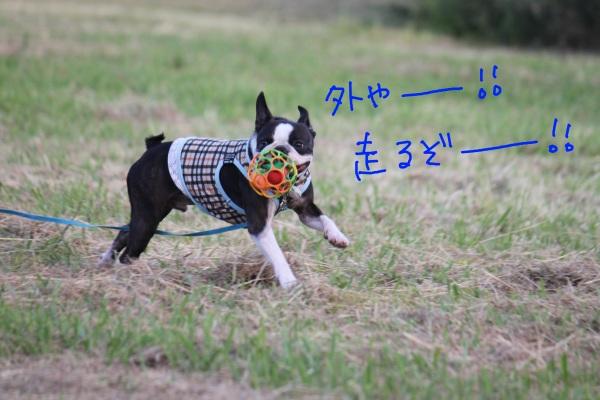 鶴見緑地 060-1