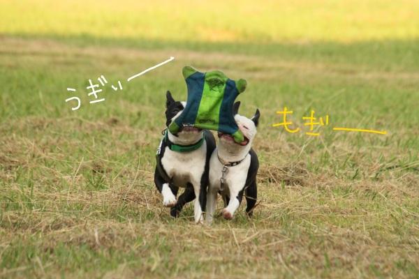 鶴見緑地 154-1