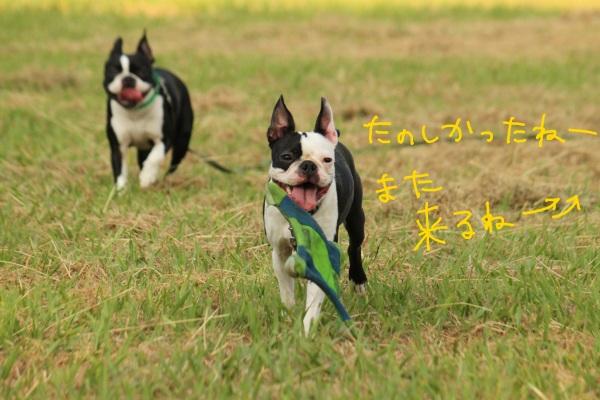鶴見緑地 197-1