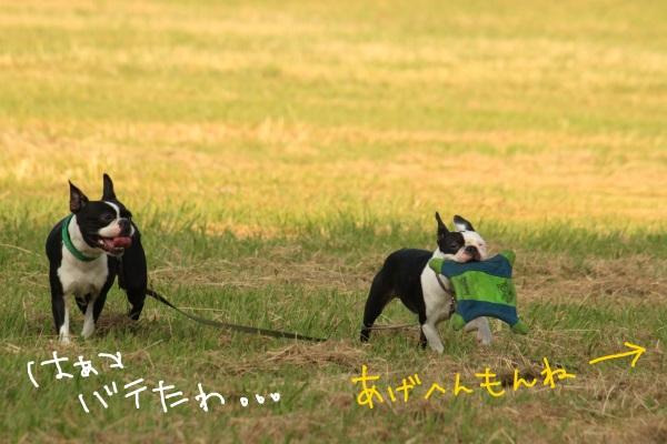 鶴見緑地 193-1