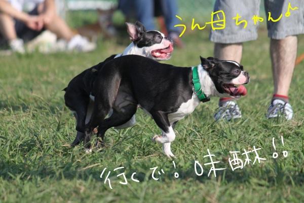 海ふれ2011.9.10 103_edited-1