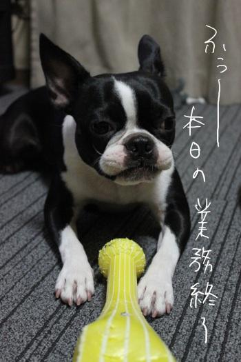 海ふれ9・23 061_edited-1