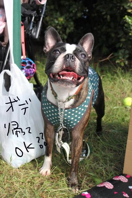 関ボス2011.10.23-1 140_edited-1 (427x640)
