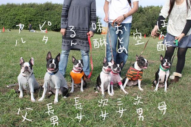 関ボス2011.10.23-1 230_edited-1 (640x427)