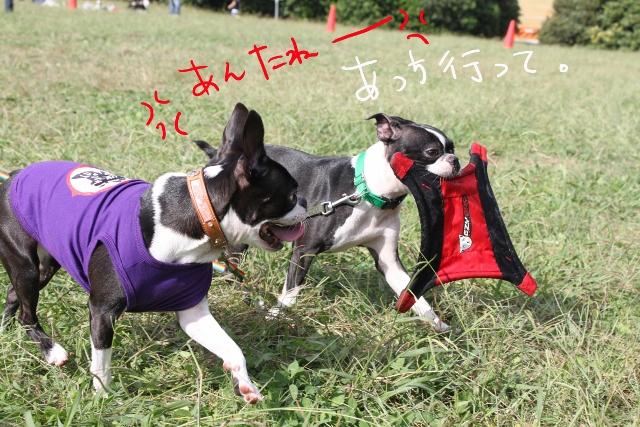 関ボス2011.10.23-1 287_edited-1 (640x427)