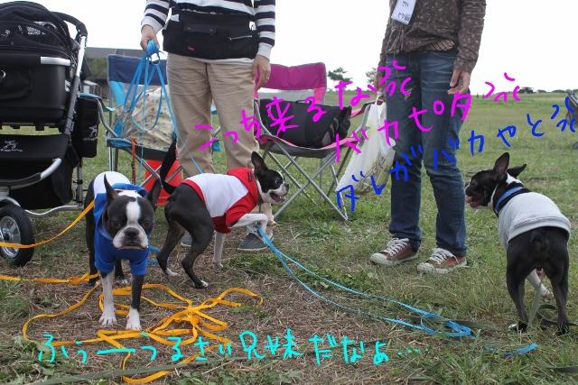 関ボス2011.10.23-1 311_edited-1 (640x427)