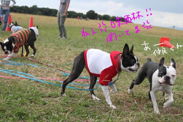 関ボス2011.10.23-1 321_edited-1 (640x427)