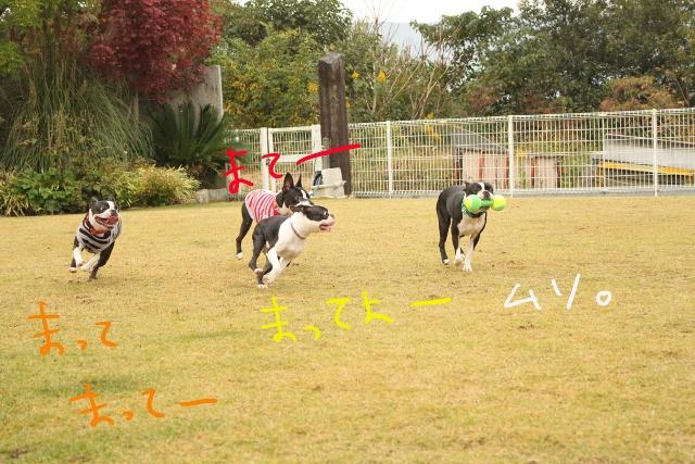橋本2011.11.03 041_edited-1 (640x427)