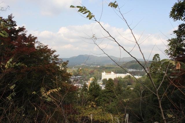 ぽんみり、和歌山2011.11.20 069 (640x427)