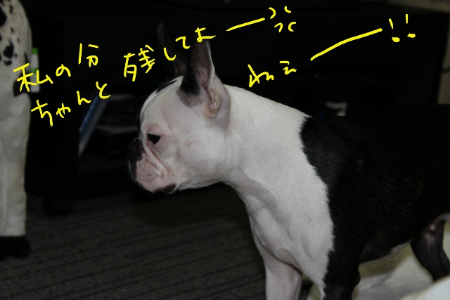 ぽんみり、公園 265_edited-1 (640x427)
