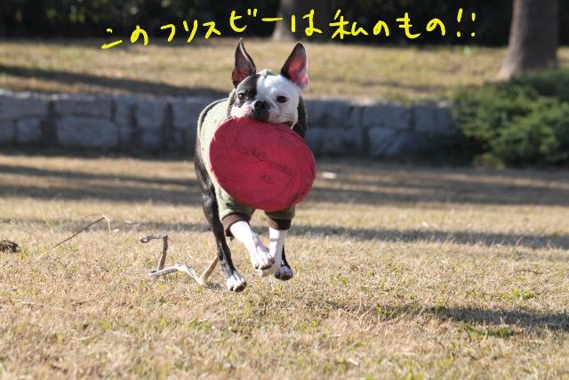 ぼとめ、ぽんみり 366_edited-1 (640x427)