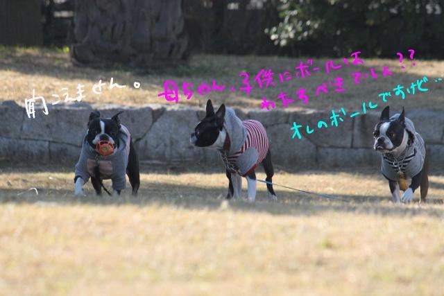 ぼとめ、ぽんみり 407_edited-1 (640x427)