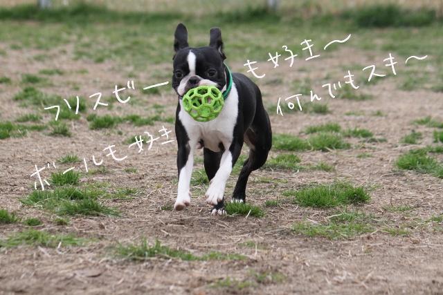 ぽん酢BD 124_edited-1 (640x427)