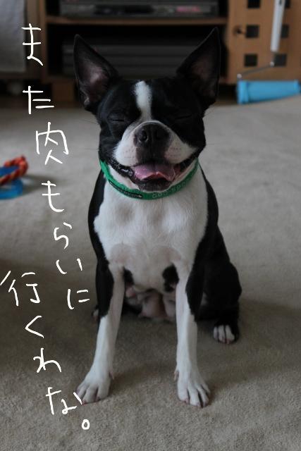 ぼりょぽん 106_edited-1 (427x640)