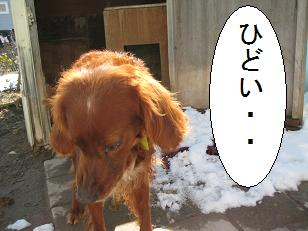 2010_0408_130531-IMG_0084.jpg