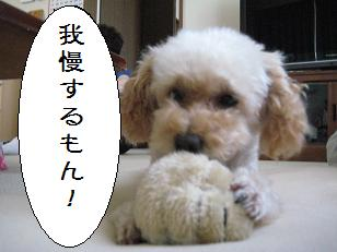 2010_0818_163633-IMG_1314.jpg