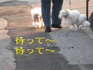 2010_0818_174056-IMG_1320.jpg