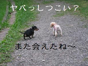 2010_0822_174601-IMG_1403.jpg