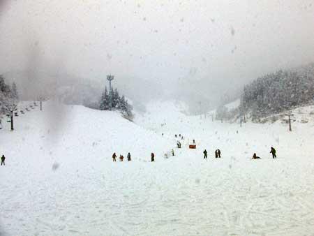 お正月スキー1