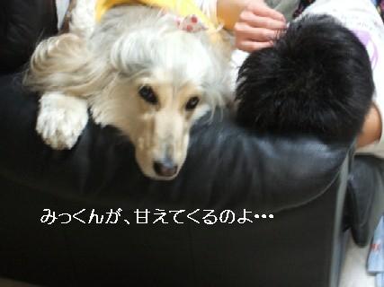 2010_01270503.jpg