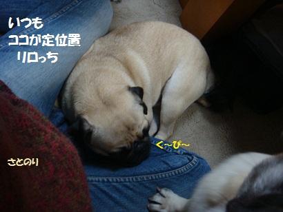 DSC00134_20110510040117.jpg