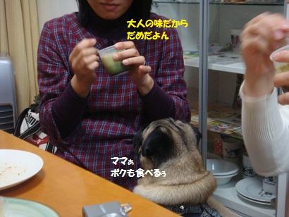 DSC00544_20110521031109.jpg
