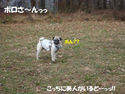 DSC09323_20110427194840.jpg