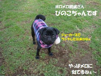 DSC09469.jpg