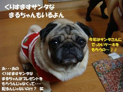 DSC09839_20110505040959.jpg
