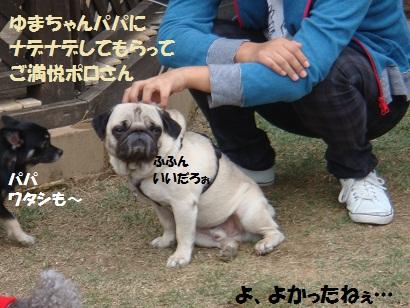 PMBS3399.jpg
