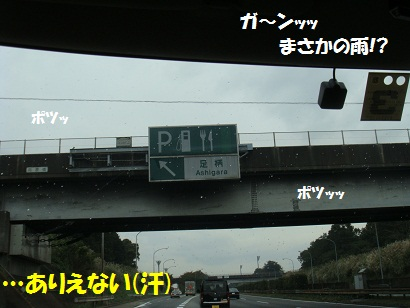 PMBS3822.jpg