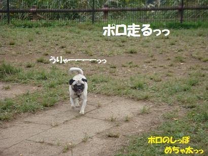 PMBS3834.jpg