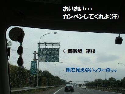 PMBS3843.jpg