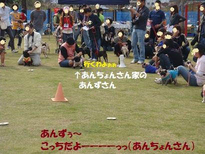 PMBS4069.jpg