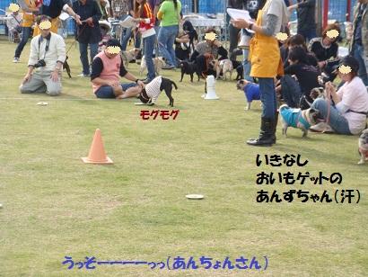 PMBS4071.jpg