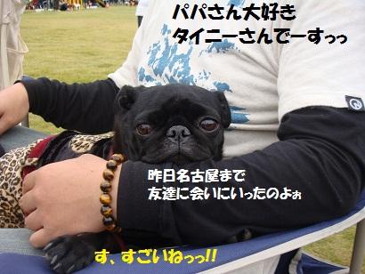 PMBS4137.jpg