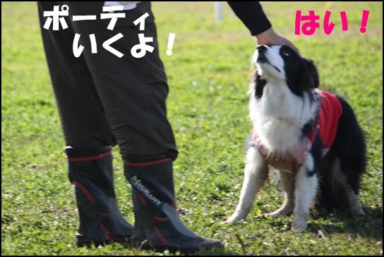 Blog新舞子1