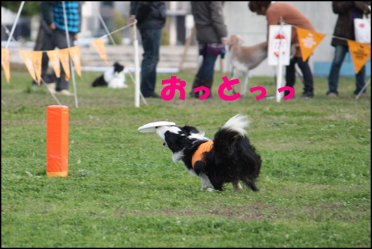 Blog新舞お