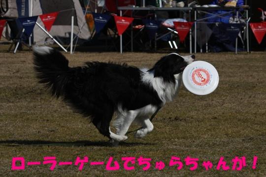 岡崎キラ3