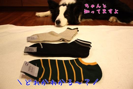 2010711靴下