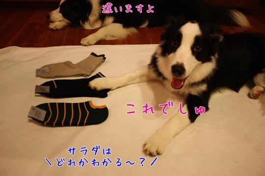 2010711靴下1