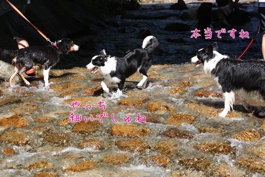 2010718191川1